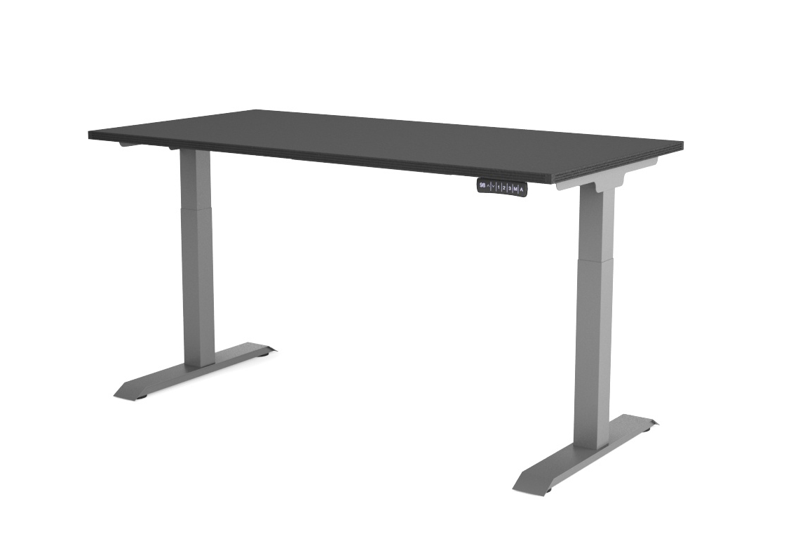 30″x60″ iRize Electric Height Adjustable Standing Desk